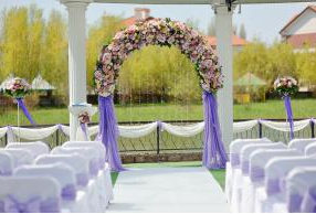 arch_of_purple_chiffon__roses__lilies__gerbs